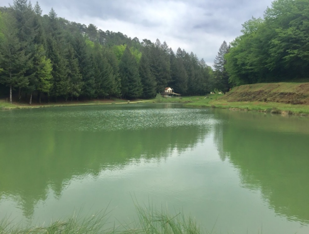 Little lake in France (Prats du Périgord)